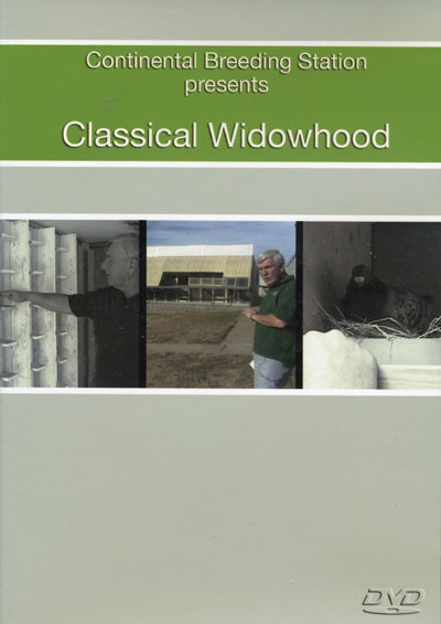 Classical Widowhood